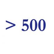 свыше 500 руб. (10)